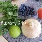 Perfect for the Weekend {Blueberry Salsa}