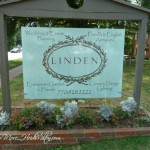 Shopping Around: Linden