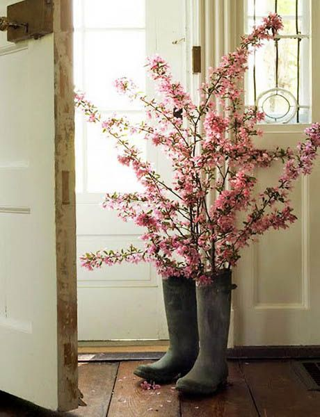 spring - stems in boots