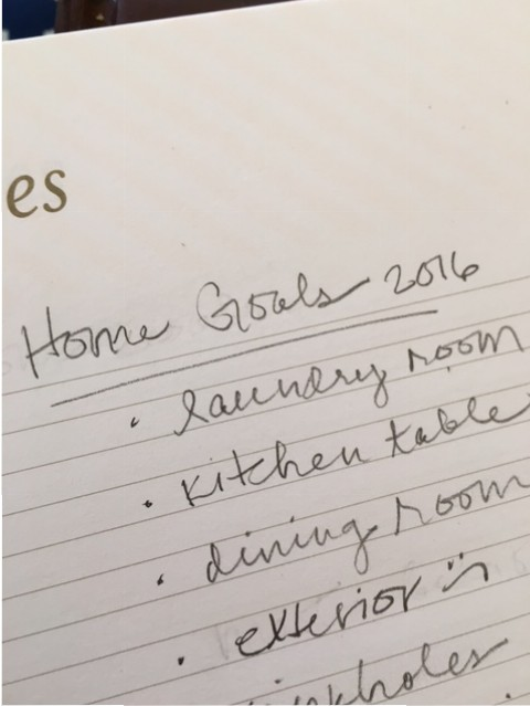 home goals 2016