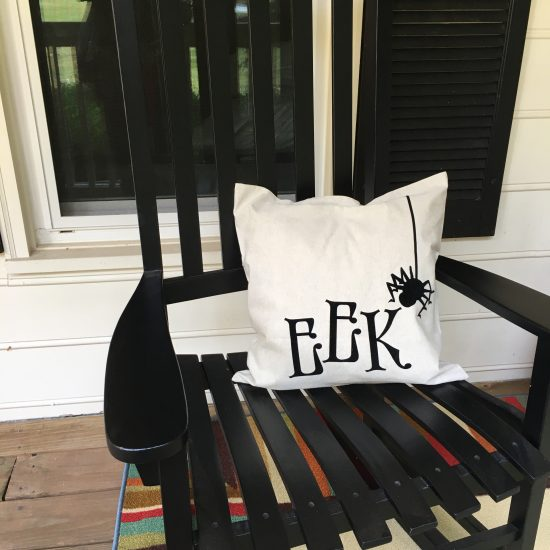Eek pillow fall porch decor