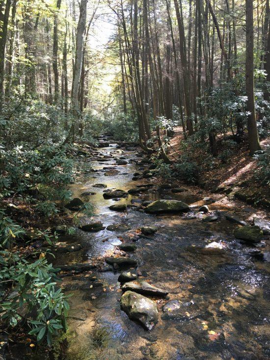 Blue Ridge - Noonatoola Creek