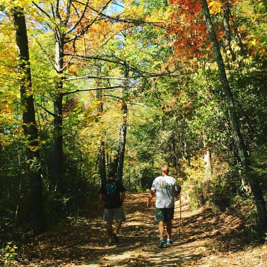 Blue Ridge - walk in the woods
