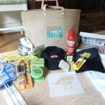 Haven 2013 swag bag