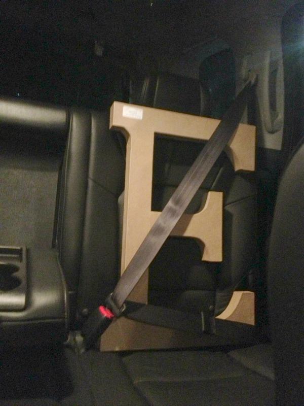 Erin's E buckled