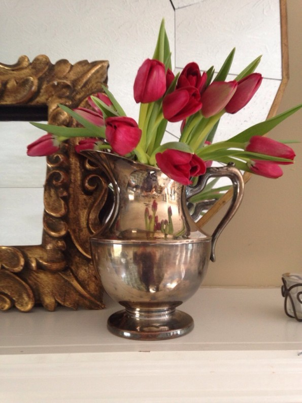 tulips in silver pitcher