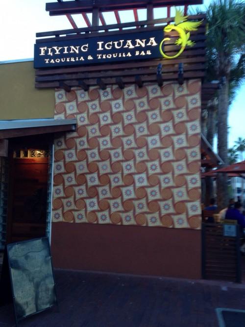 Flying Iguana