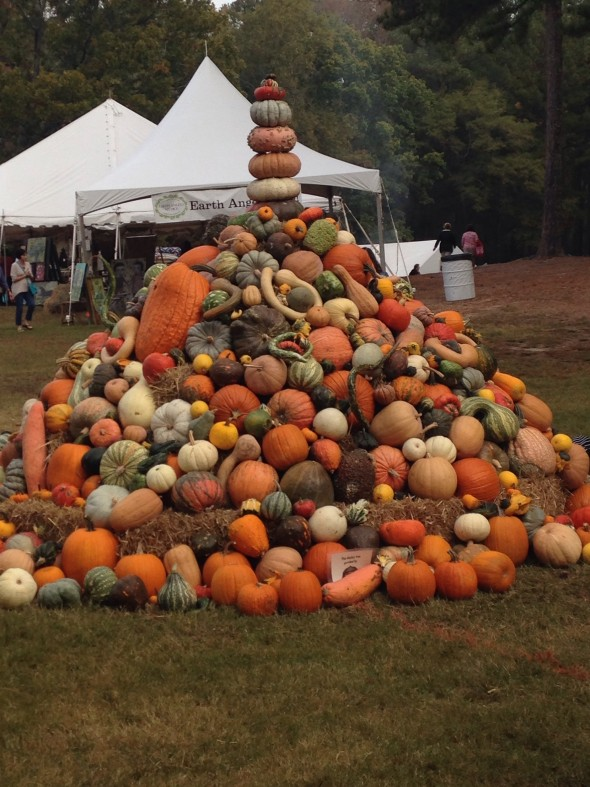 CL Fair pumpkin pile