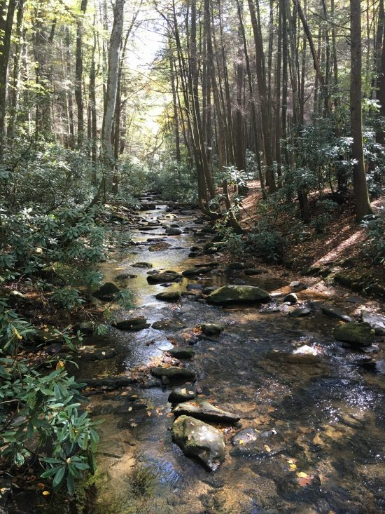 Blue Ridge - Noonatoola Creek